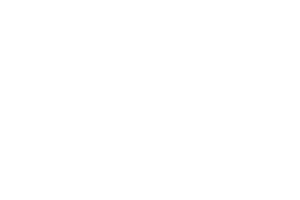 logo_xprpro_light